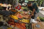 Listado de ferias de frutas y verduras del Municipio E
