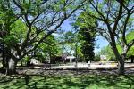 Parque Grauert - Foto Artigas Pessio (IM)