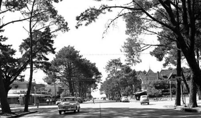 Avenida Arocena. Año 1962. (Foto 10050 FMH.CMDF.IMM.UY)