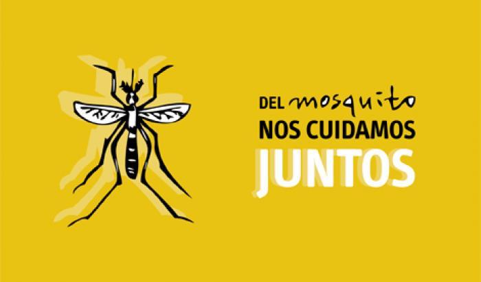 Municipio E contra el Aedes Aegypti